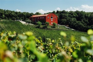 Caiarossa - Winery