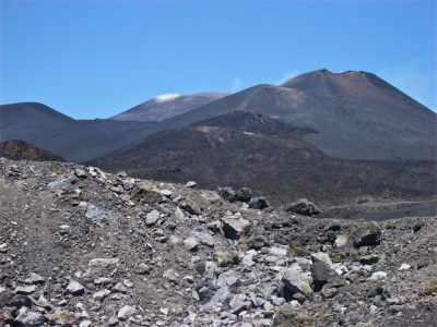 Etna terroir
