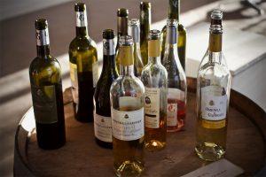 Orenga de Gaffory wine tasting