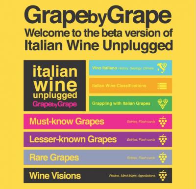 Italian Wine Unplugged