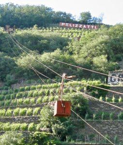 Valtellina Ar.Pe.Pe. Téléférique