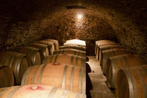 Tai Rosso sleeping in the Piovene Porta Godi Cellars