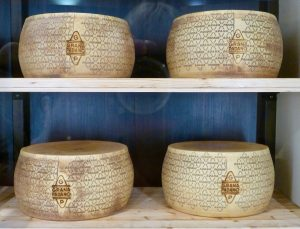 Grana Padano cheese at FICO