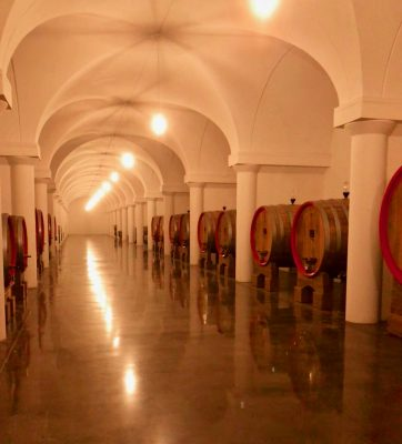 Spotless - the Tabarrini cellar