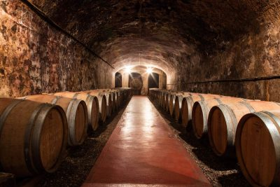 Tenuta di Ghizzano cellars