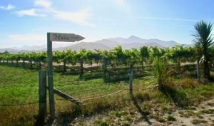 To Huia, Wairau Valley, Marlborough, NZ