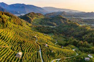 DOCG landscape_of_conegliano_valdobbiadene_prosecco_photo_credits_arcangelo_piai_2