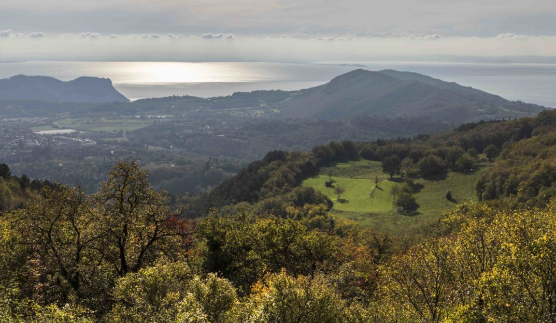 Bardolino Montebaldo subzone
